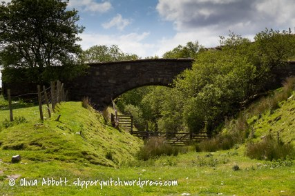 prysor railway walk-13