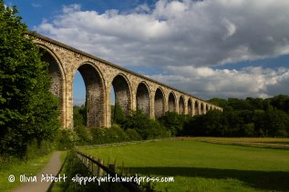 viaduct (11 of 14)