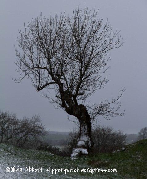 20151212-brough snow 025