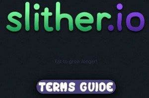 Slither.io Terms Guide