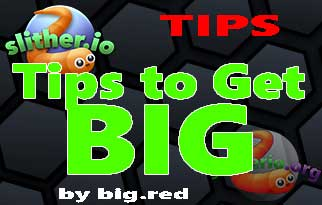 Tips to Get Big Slither.io