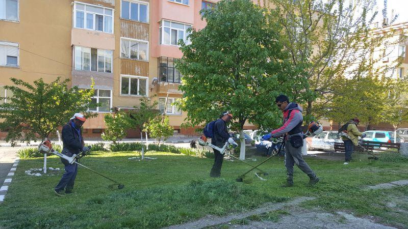 Започна интензивното косене на тревните площи в Сливен