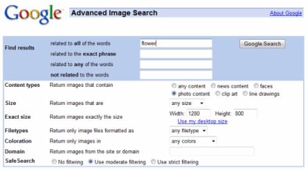 google image search