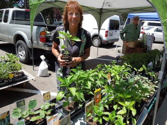 Serena Wyatt in her booth at Farmers Market in Templeton