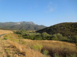 "In the distance is ""Old Boney"" Mountain in Point Mugu State Park"