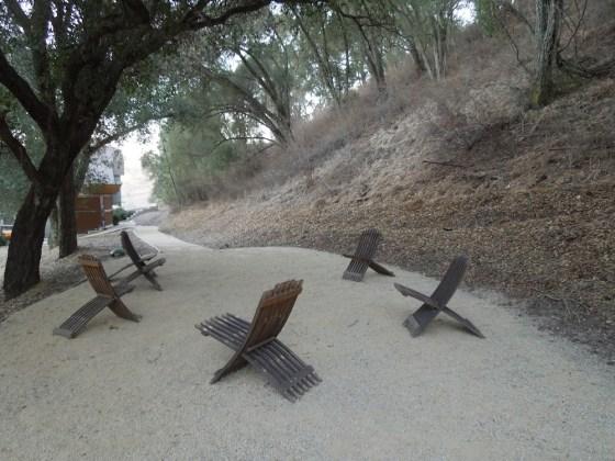 Path Behind Shale Oak Winery