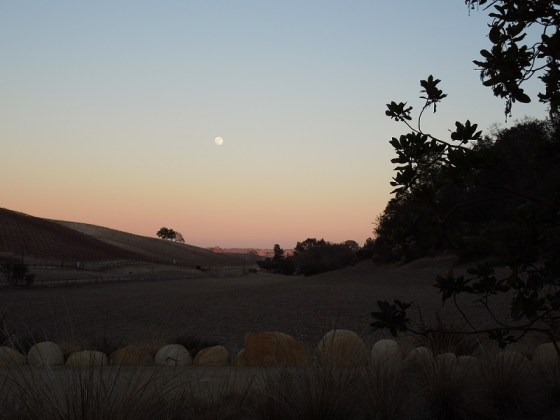 Moon Rising on Oakdale Road
