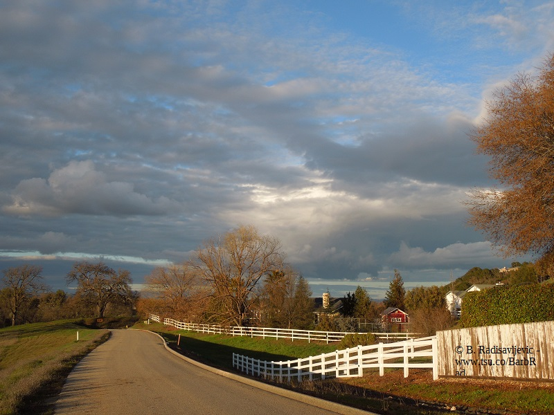 Looking Up Bennett Way from Vineyard Dr. in Templeton