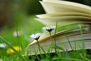 Open homeschool books, laid on grass.
