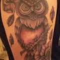 20 awesome owl tattoo designs sloe