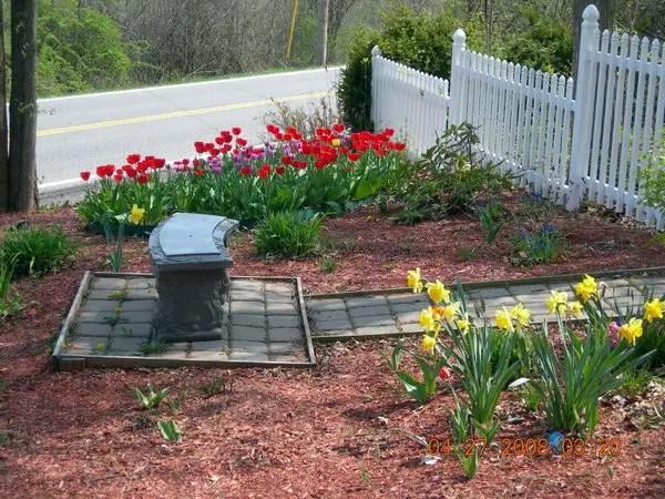 brilliant inexpensive landscaping