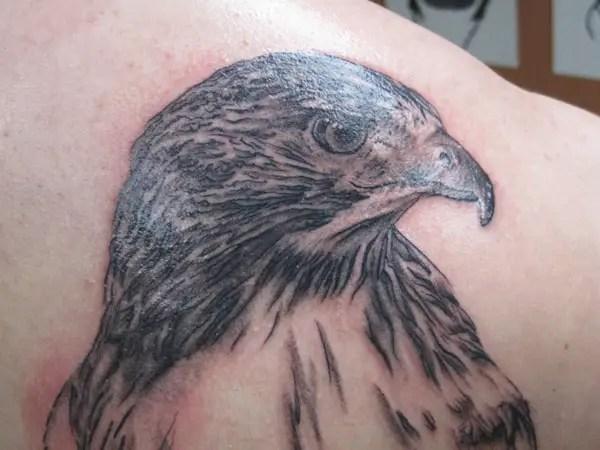 26 Dramatic Hawk Tattoo Artworks