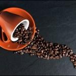 ベトナムコーヒー・ココア協会が政府にコーヒー備蓄補助延長を申請