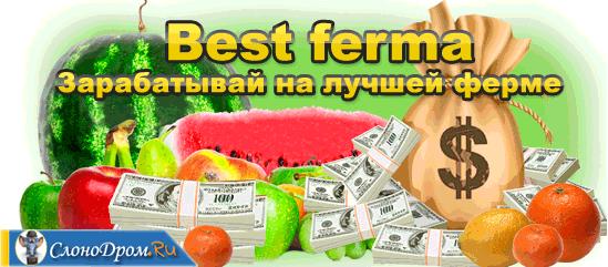 """Игра """"Лучшая ферма"""""""