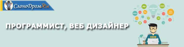 Подработка программистом или веб дизайнером