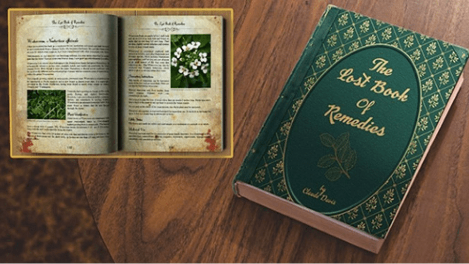 The Lost Book of Remedies by Claude Davis