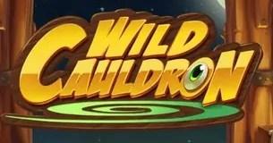 Wild Cauldron by Quickspin Logo
