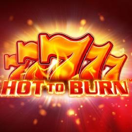 Hot to Burn Slot Game