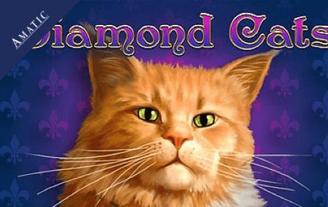 What Are The Best Online Casino Bonuses Blog - Ad24point.de Casino