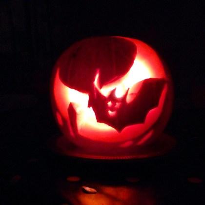 Halloween bat pumpkin
