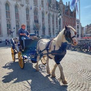 Bruges horse carriage
