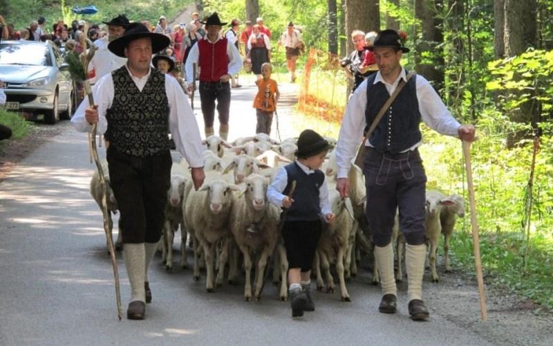 Shepherds' Festival Jezersko1 min read