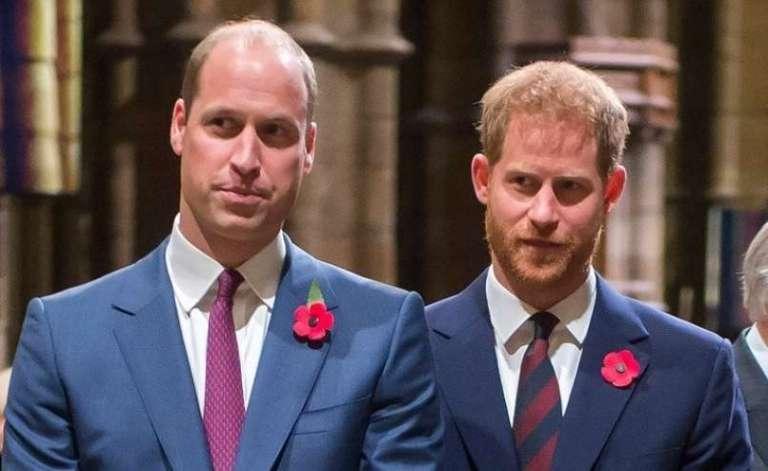 Slaba kri med bratoma, William Harryja ne more več objeti