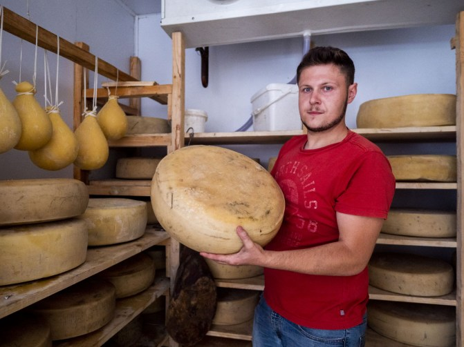 Salvatore holds a 12 months old maiorchino wheel in the curing chamber