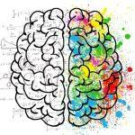 cerveau souplesse cérébrale logique créatif art maths