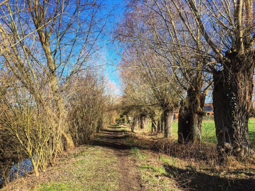 Chemin Hergnies Slow Tourisme Grand Marais