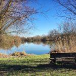 Slow Tourisme Valenciennes Hergnies Banc Lac Nature mouvement slow