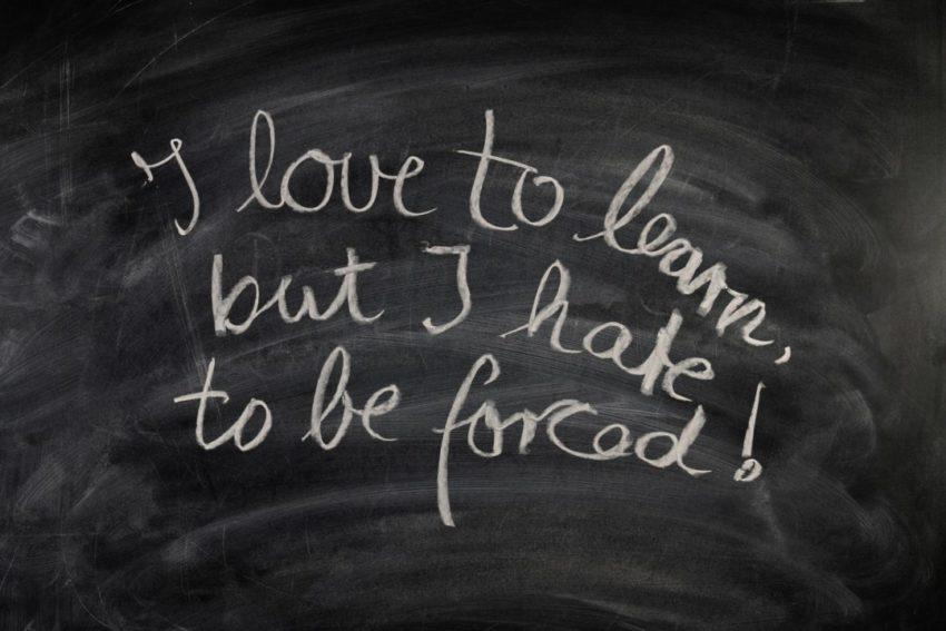 board slow education love hate