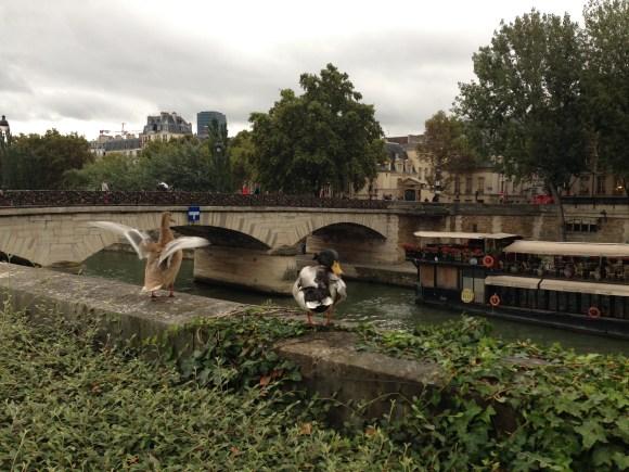 L'amour à la française. Paris, Oct. 2013. Photo: ©Slowaholic