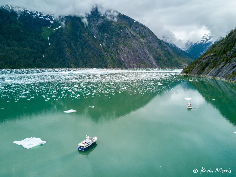 Day trip to Le Conte Glacier from Petersburg