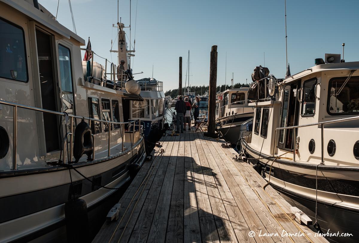 Flotilla docked in Roche Harbor