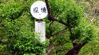 香川と徳島の県境バス停
