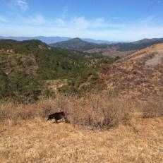 arizona camp view