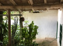 tenza house garden