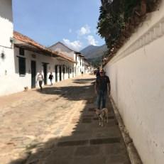 villadeleyvadogwalk