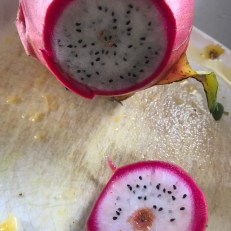 Dragonfruit or Pitaya