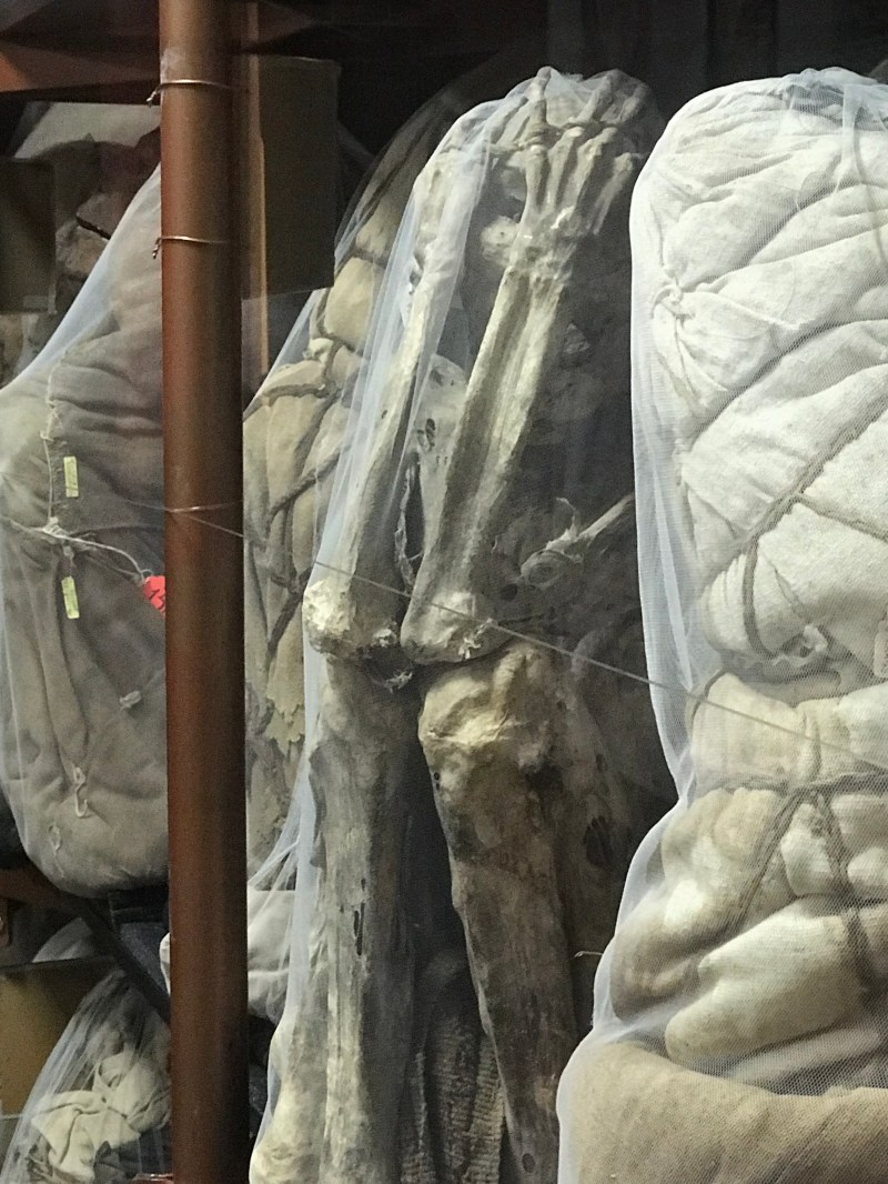 leymabamba mummy2..jpg
