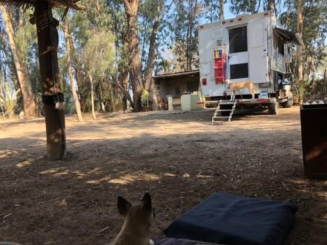 camp near nasca shade