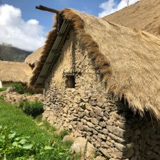 marcapata thatched roof