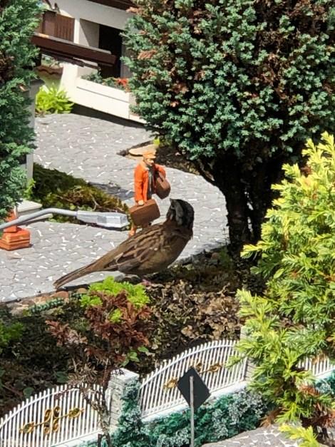 mini mundo big bird