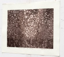 Sideview of monochrome on silver print Wanderer 4th state by Randall Stoltzfus