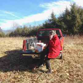 Picnic in January Catherine Stoltzfus on tree farm
