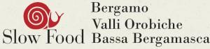 logo 3 condotte BG