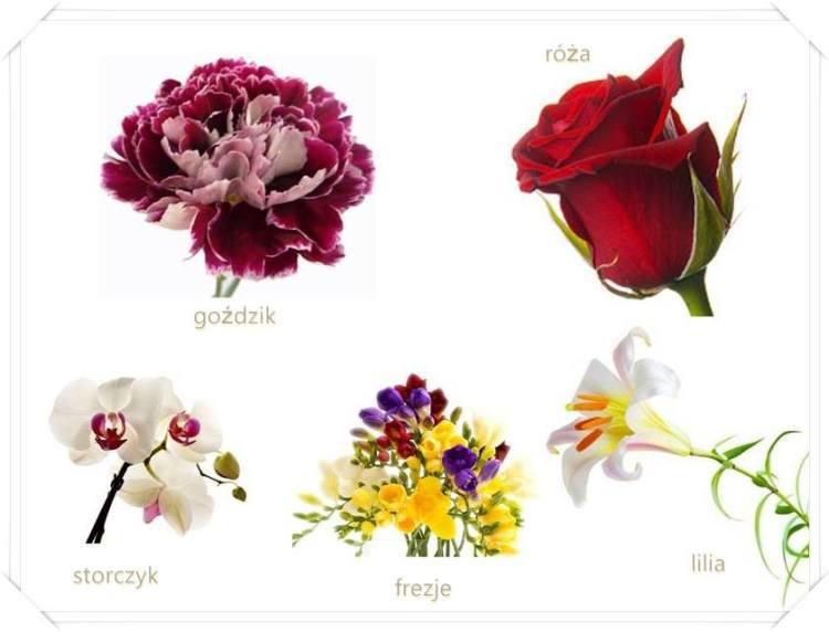 Jak Podarowac Kwiaty By Wszystko Stalo Sie Jasne Slow Gift