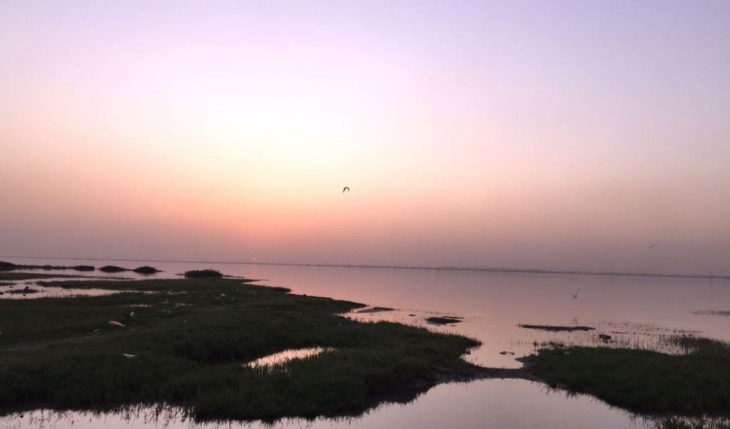 Nile River - Rubli Carran