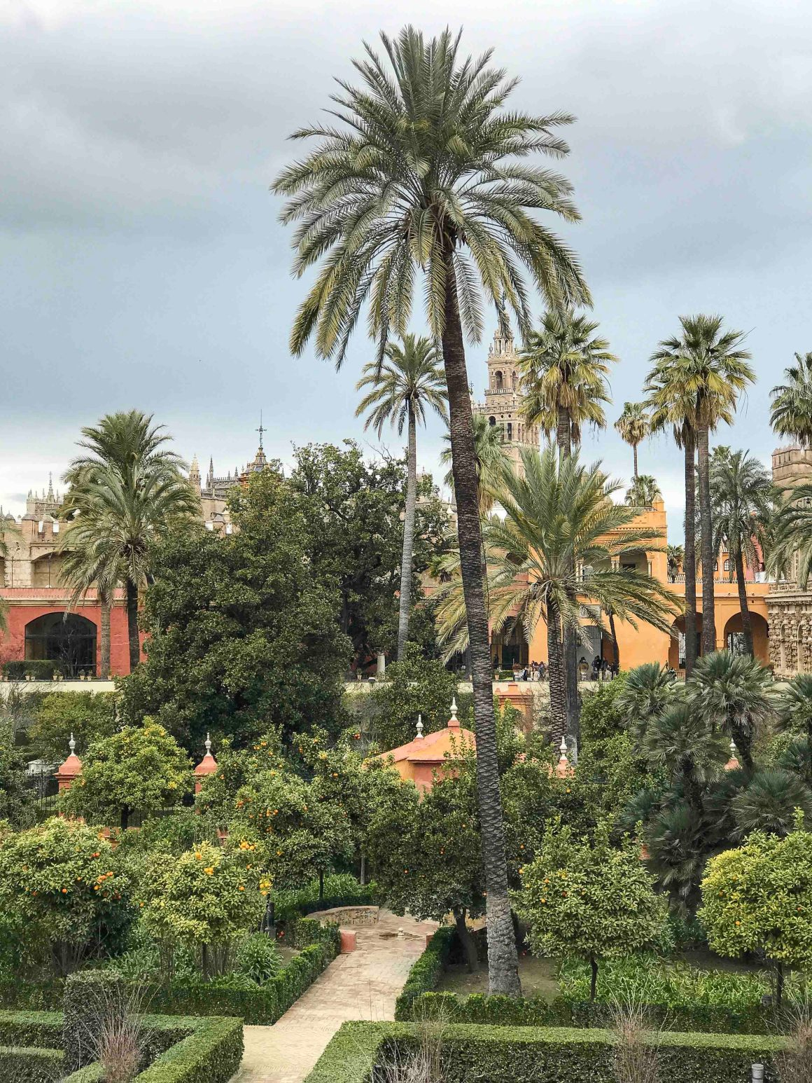 massive garden with orange and palm trees